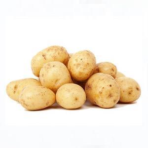 Fresh Potato/Potatoes/ Spunta / Washed/Clean Potatoes