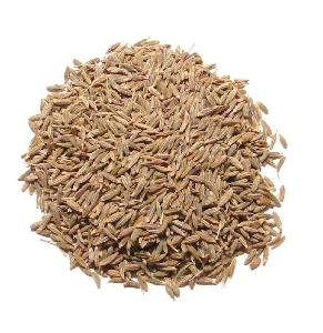 100% pure natural cumin seed  export
