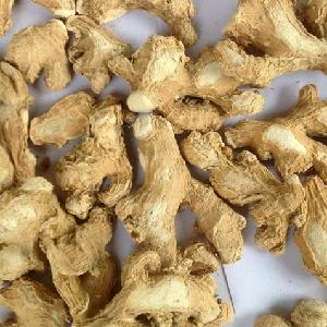 Fresh/Dried Ginger & Garlic manufacturer's