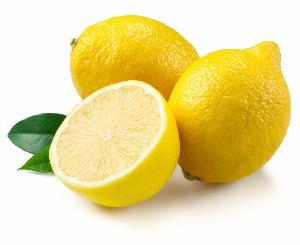 Fresh Lemon manufacurer s