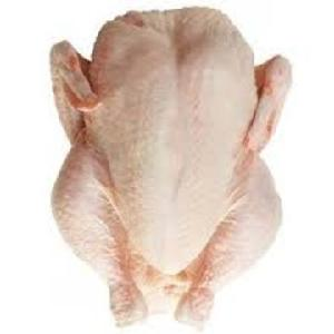 Hala Certified Whole Frozen Chicken Suppliers