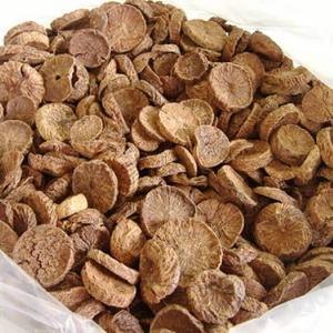 Betel Nuts Thailand / BETEL NUT - ARECA NUTS / Quality whole and Split Betel Nut