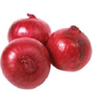 FRESH ONION FROM EGYPT WITH BEST QUALITY AND BEST PRICE NEW CROPS