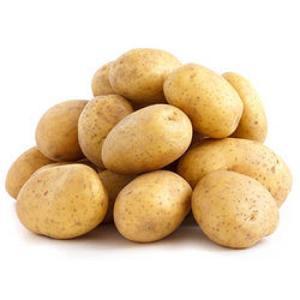 Fresh Potatoes   Holland Potatoes   Irish Potatoes For Sale`