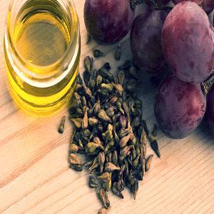 High quality Grape seeds / Vitis   vinifera  seeds on sales