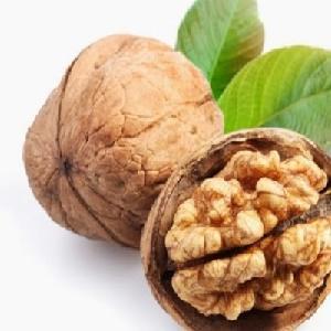 Raw Dried Walnut Kernel for sale