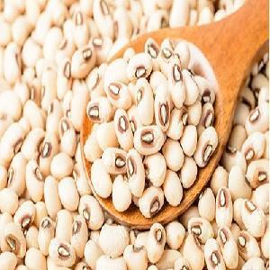 new crop black eye bean/white cow pea bean for sale