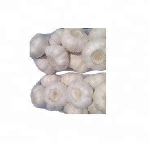 Fresh   Garlic  , white   garlic  and red  garlic  , Fresh  Pure  White   Garlic