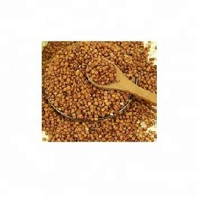 Sorghum Seed,red sorghum grain seed, white sorghum seeds