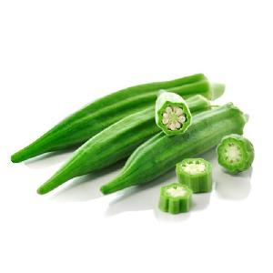 2020 Hot Sale Organic Vegetable Seed Free Samples Price Hybrid Okra Seeds High Yield Okra Seeds
