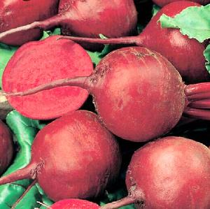Wholesale high yield Chinese Vegetable Red Beetroot seeds