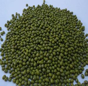 2018 Fresh competitive price high quality green mung beans for sale