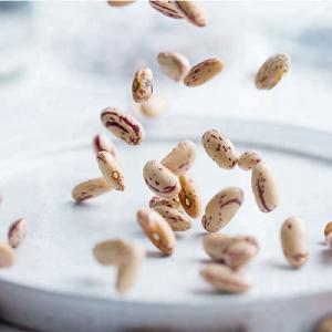 High Quality Light Speckled Kidney Bean LSKB bean with fast delivery