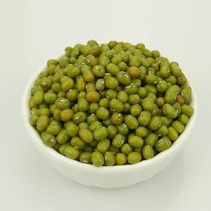 100% Best Quality Chinese Origin Green Mung Bean