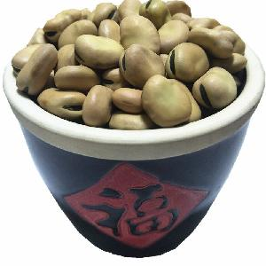 Chinese  Qinghai wholesale factory dried broad bean with market price