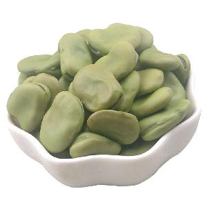 Export high quality bulk dry brown and green fava beans broad beans for sales