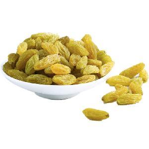 Best seller dried jumbo green raisins for exporters