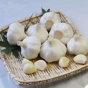 Wholesale China 2018 new crop pure white and normal white garlic fresh garlic price