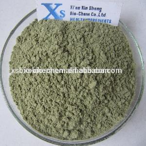 High Quality GMP standard Wheat  grass   Powder