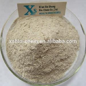 GMP standard High Quality Natural  Almond   Milk   Powder / Almond   Powder / Almond  Flour