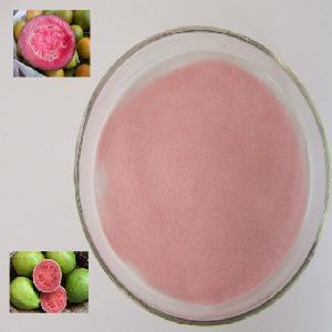 GMP standard Natural Guava Powder