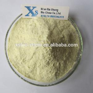 GMP standard Natural Papaya Powder