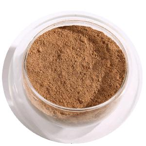 Touchhealthy supply Water soluble champignon  chaga   mushroom   extract  powder