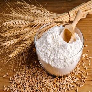 Wheat Flour for Bakery   Bread