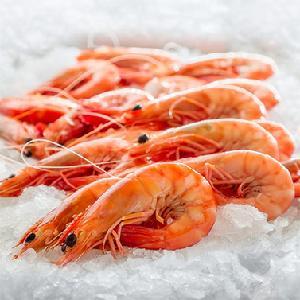 deep frozen  sea   tiger   shrimp  prawn