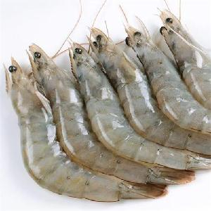 Frozen Seafood PDTO IQF  Black   Tiger  Prawn from Thailand