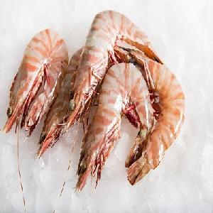 Frozen Headon  Fresh   Water  Scampi  Prawn s / Dried Shrimp High Quality