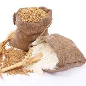 Best Quality Whole Wheat Flour Price Ukraine, Russia   Indian Origin