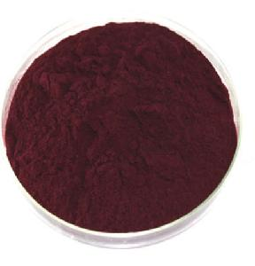 Factory Supply High Quality 25% Anthocyanidins CAS 84082-34-8 Bilberry Extract Powder