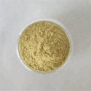 Black Cohosh Powder For Female Menopause Herbal Medicine