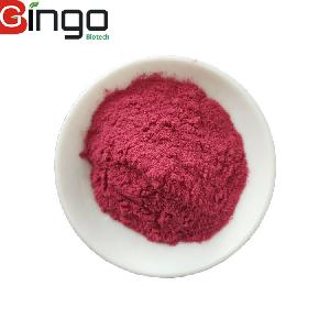 Wholesale Instant Black  Currant  Juice Concentrate  Powder  In Bulk Stock