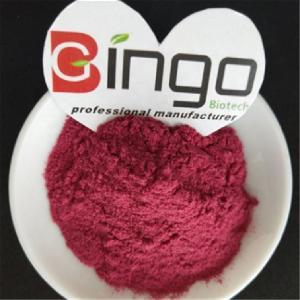 Pure organic black currant juice powder