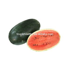 Touchhealthy supply oval shape.9-16 kg per fruit watermelon hybrid seeds 10gram/bags