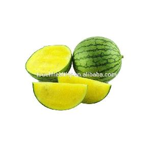 Touchhealthy supply High Disease resistant Seedless Watermelon hybrid seeds for sowing 10gram/bags
