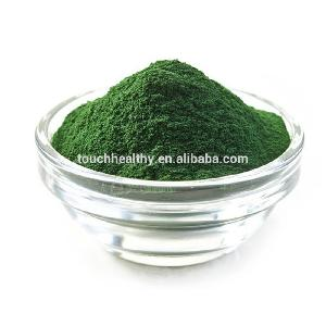 latest products in market private label natural organic seaweed powder price