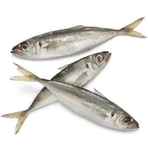 Factory wholesale red tail frozen horse mackerel fish for marketing sale