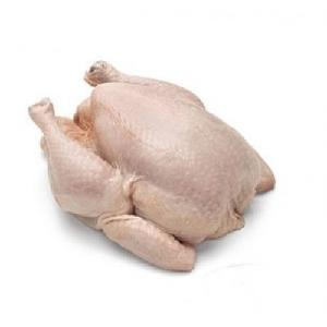 QUALITY HALAL WHOLE FROZEN CHICKEN AND CHICKEN PARTS FROM BRAZIL