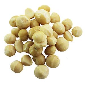 Macadamia  Nuts   Suppliers / Shell and Unshell Macadamia  Nuts /Whole Raw Macadamia  Nuts