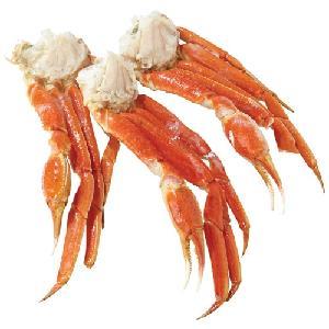 Frozen Alaskan and Norwegian King Crab Legs / Boiled King Crab Legs /Mud Crabs