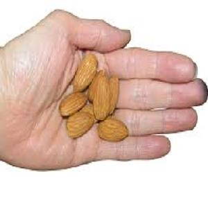 shelled and  unshelled  raw almond  nuts