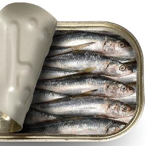 425g good canned sardines/mackerel/tuna fish/canned fish food