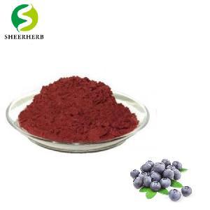 Best bilberry extract anthocyanin powder supplement health benefits foods anthocyanin