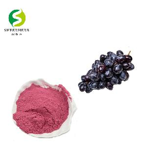 China dioralyte black currant   powder  for oral solution supply black  currant  fruit  powder  high quality Black currant   powder