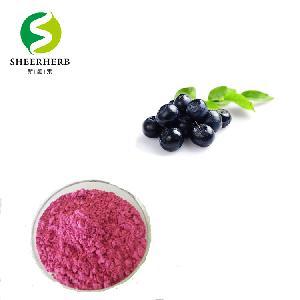 China cowberry powder amazon supply lingonberry powder extract high quality Cowberry powder