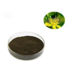 Sheerherb supply hot sales St. John s wort extract hypericum perforatum powder extract for Antidepressant Capsules