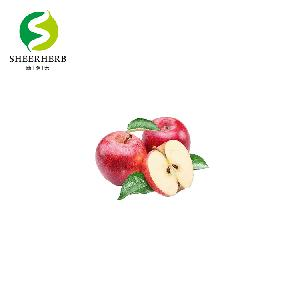 Plant extract fruit powder Green Apple Fruit Juice Powder Convenient Instant Apple Juice powder